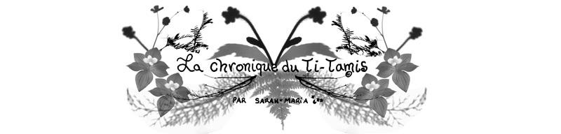 Aube-Recueil-Solutions-Chronique-du-Ti-Tamis-Logo